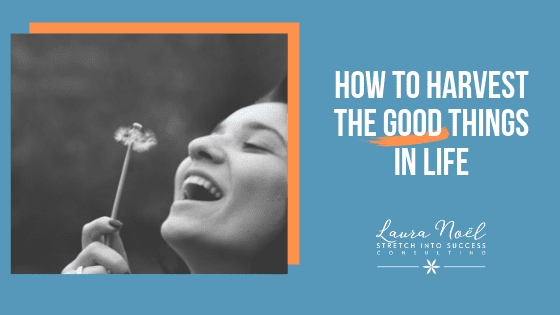 How To Harvest The Good Things In Life